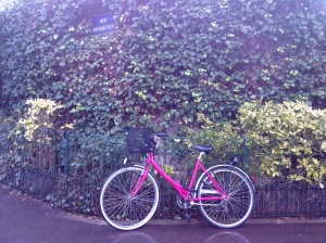 Love this pink bike against the vining cemetery wall. Hemingway lived on Rue Froidevaux with his second wife, Pauline.