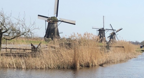Three Windmills in Kinderdijk