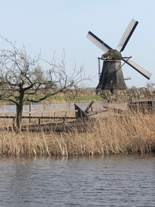 On a Sunny Day in Kinderdijk